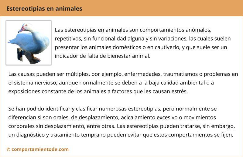 Resumen, conclusiones sobre estereotipias en animales