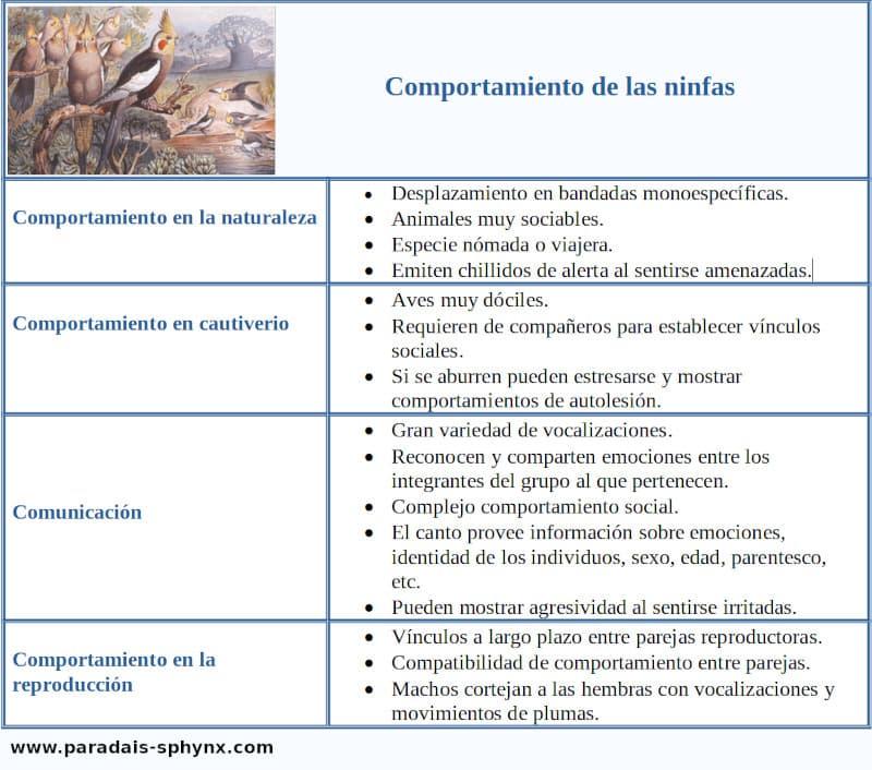 Cuadro resumen, esquema sobre el comportamiento de las ninfas.